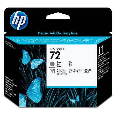 HP Ink No.72 Gray and Photo Black Printhead (C9380A)