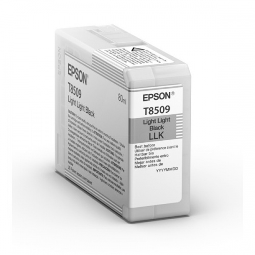 Epson Ink Light Light Black UltraChrome HD (C13T850900)